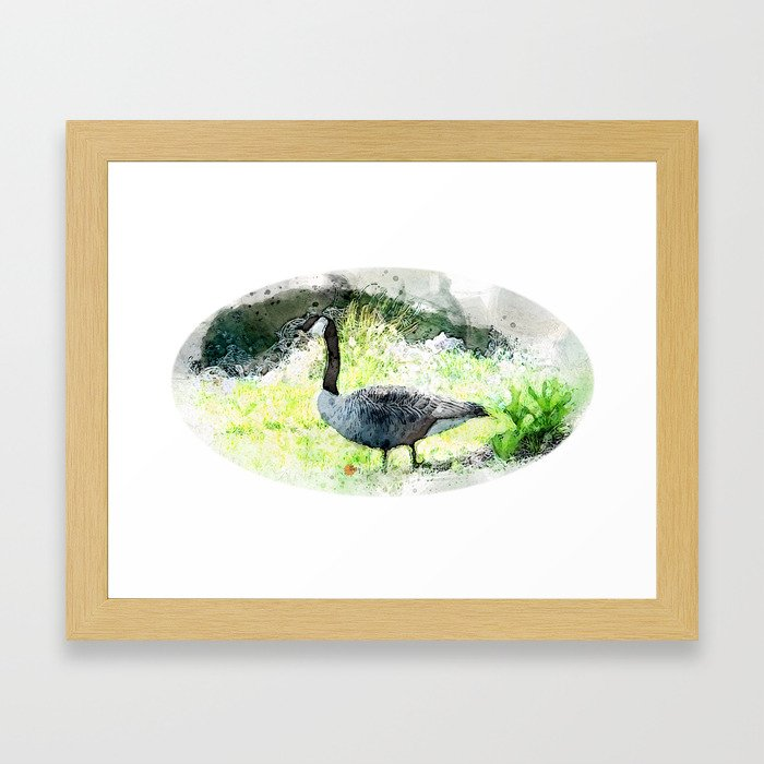 Goose and Pond Tery Spataro-framed-prints