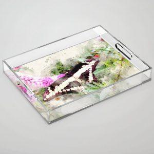 @tery butterfly-acrylic-trays