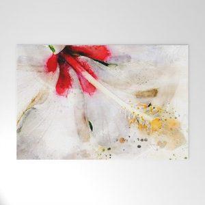 @Tery white-hibiscus-welcome-mats